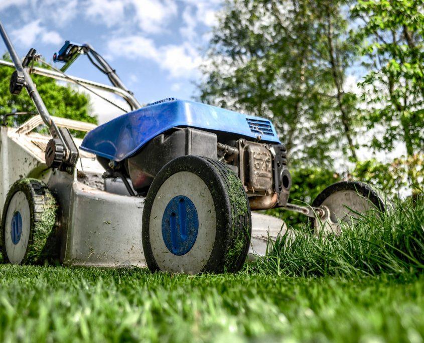 Gartenarbeit Volksbank Lübbecker Land 2018